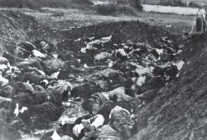Massaker Kraljevo streljanje doubijanje-41